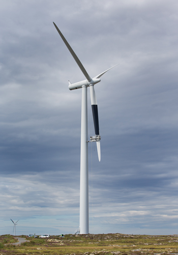 Less Bird Deaths with Black Wind Turbine Blades
